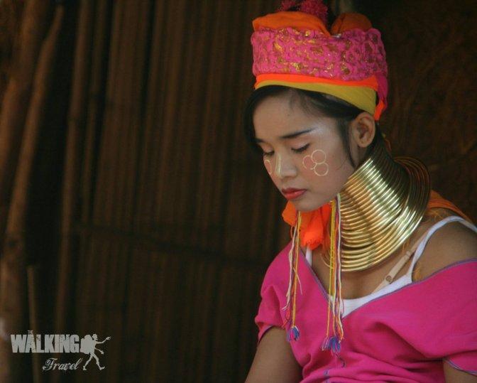 29/10/15 Long Neck tribe y Doi Mae Salong.